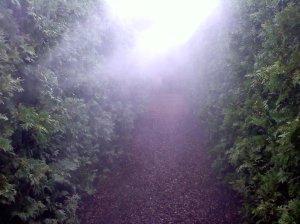 luray maze